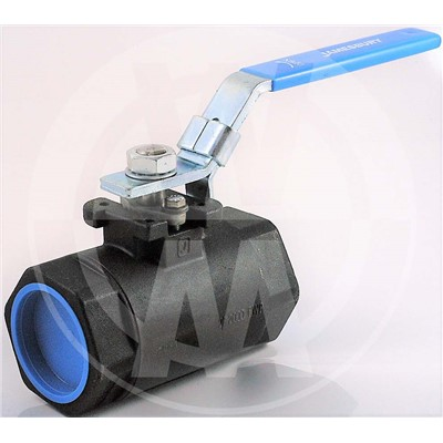 Eliminator Ball Valve, 2in NPT, SS
