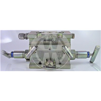 Manifold, 5 Valve, CS, .375 Orifice